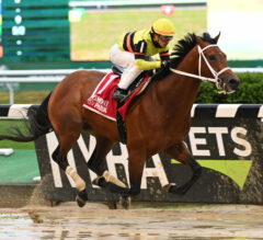 Beren Posts Gate-to-Wire Victory in Off-Turf Paradise Creek