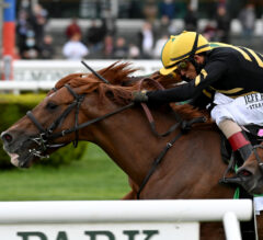 Johnny V Gives Channel Cat 'Purrfect' Ride in Man o' War