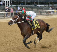 Firenze Fire Ignites 6-Year-Old Campaign in G3 Runhappy