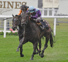 Alcohol Free Wins Coronation, Brings Murphy Redemption