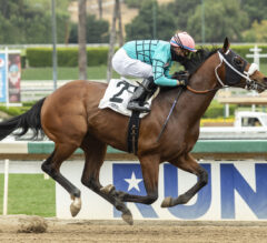 Big City Lights Looms Complete Standout In Fasig-Tipton Futurity