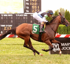 Graded Stakes Trio Part Of Stellar Queen's Plate Undercard