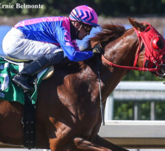 Brickyard Ride Back On Top In Thor's Echo