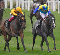 Campanelle Awarded Commonwealth Cup Via DQ