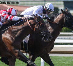 Country Grammer Re-Breaks, Takes Hollywood Gold Cup