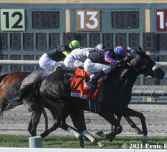 Maxim Rate Upsets Gamely