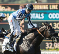 Restrainedvengence Wears Down Favored Neptune's Storm To Take American