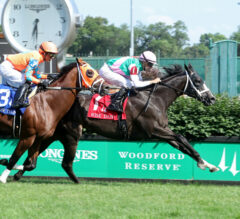 Set Piece Nails Somelikeithotbrown In Wise Dan