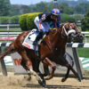 Drain The Clock Looks To Continue Strong Sophomore Campaign In Amsterdam
