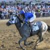 Racing Dudes Divisional Rankings 7/28/21: Jim Dandy Weekend Looms Large