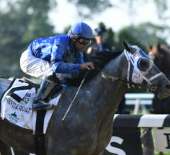 Jim Dandy Preview: Will the Graveyard of Champions Claim Another Victim?