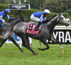 Althiqa, Summer Romance Repeat Just a Game Finish in Diana
