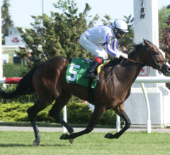 Another Time Takes Another Shot At Nassau Glory