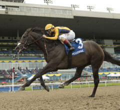 Easy Time Triumphs In Marine