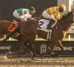 Queen's Plate Trail Heats Up With Sunday's Marine, Queenston