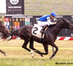 Indian Lake Among Field Of 12 In New Kent County Virginia Derby