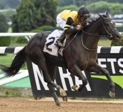 New York-Bred Ready A.P. Impresses On Debut