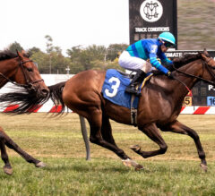Tightly Twisted Pulls The Upset In Big Dreyfus