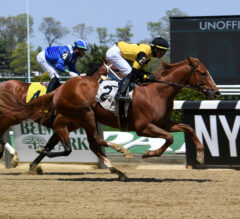 First Captain Makes Anticipated Stakes Debut In Dwyer