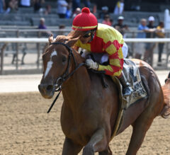 First Captain Seeks To Maintain Perfect Record In Curlin