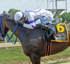 Harpers First Ride Defends Deputed Testamony Title