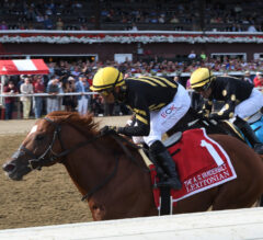 Lexitonian Looking To Carry Momentum Into Forego