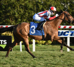 Brown-Trained Exacta Extends Trainer's Win Streak In Lake George