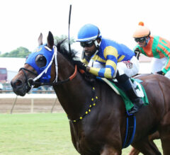 Kentucky Downs Preview Sunday