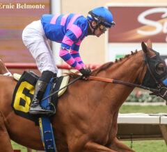 Eight Entered In Debutante, 10 In Juvenile Fillies Turf At Del Mar