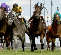 Toronto Cup, Belle Mahone Share Sunday Stage At Woodbine