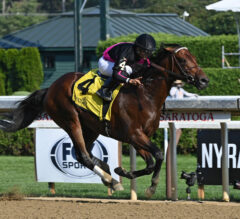 Art Collector Headlines Field Of 10 For Charles Town Classic