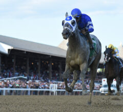 Travers Stakes Picks and 2021 Wagering Guide Presale