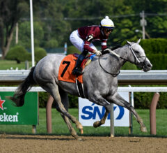 Wicked Halo Follows In Mother's Footsteps In Winning Adirondack