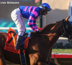 Racing Dudes Divisional Rankings 9/8/21: The 2-Year-Olds Debut