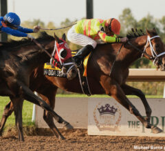 Haddassah Leads 1-2 Finish For Trainer Attard In Prince Of Wales