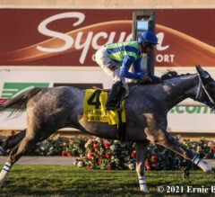None Above The Law Upsets Del Mar Derby