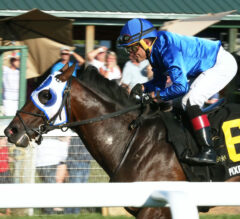 Rosario Gets Fifth Win OF Day With Pixelate In Mint Million