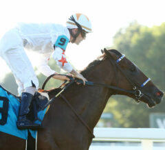 Bourbon Preview: Tiz The Bomb Brings Strong Backclass