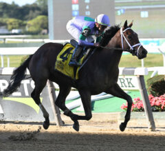 Classy Edition Puts Talent On Display In Joseph A. Gimma