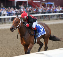 Odds-On Echo Zulu Delivers In Spinaway