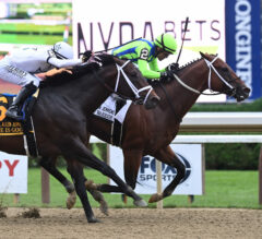 Life Is Good Makes Final Breeders' Cup Prep In Kelso; Five Likely For Athenia