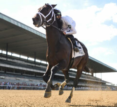 Early 2021 Breeders' Cup Predictions #3: Fields Starting to Take Shape