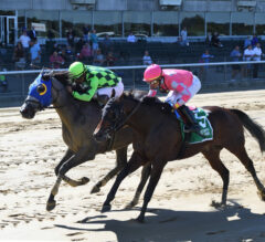 Tiergan Prevails In Off-Turf Ashley T. Cole