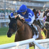 Yibir Circles Field In An Instant, Takes Jockey Club Derby