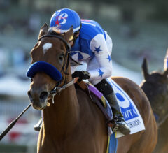 Private Mission Tosses Hat Into Mix With Dominating Performance In Zenyatta