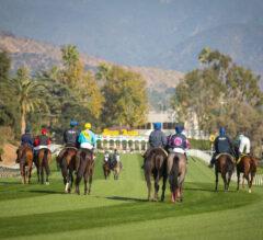 Santa Anita Hosts Twin Hillside Turf Stakes For Cal-Breds