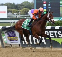 Following Sea Wires Vosburgh