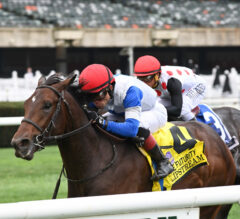 Slipstream Up In Time In Futurity